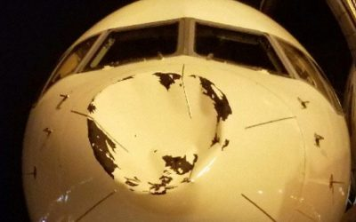 APG 296 – Nose Bent Out of Shape