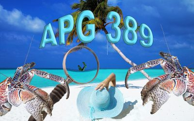 APG 389 – APG Starts Search for Amelia Earhart