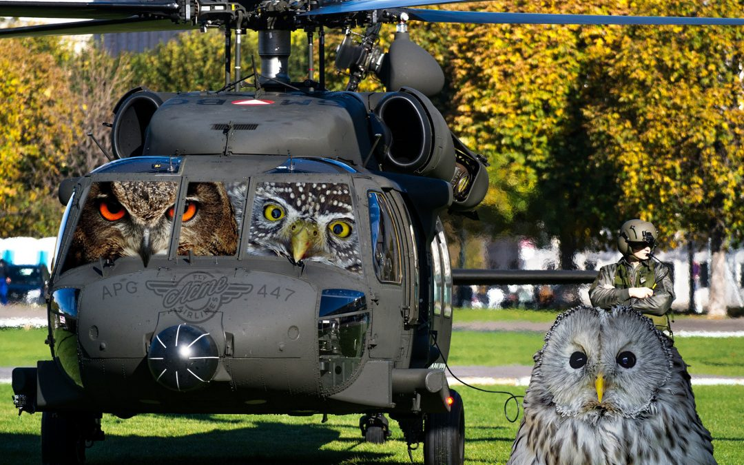 APG 447 – Helicopters and Hooters
