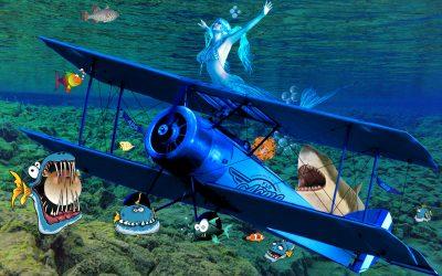 APG 489 – Underwater Wing Walker